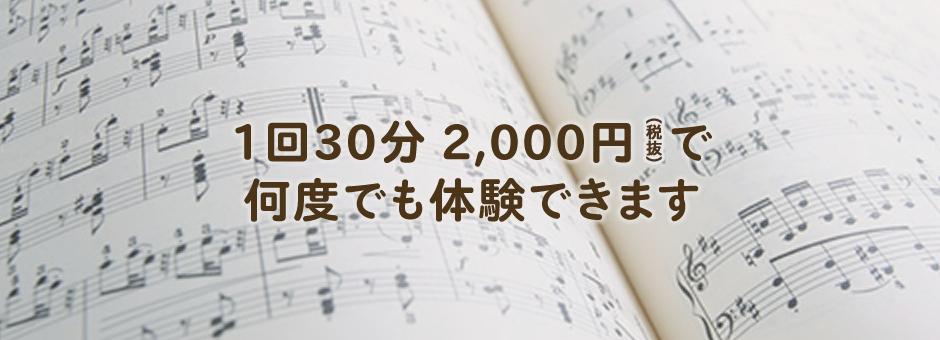 1回 30分 2,000円(税抜)